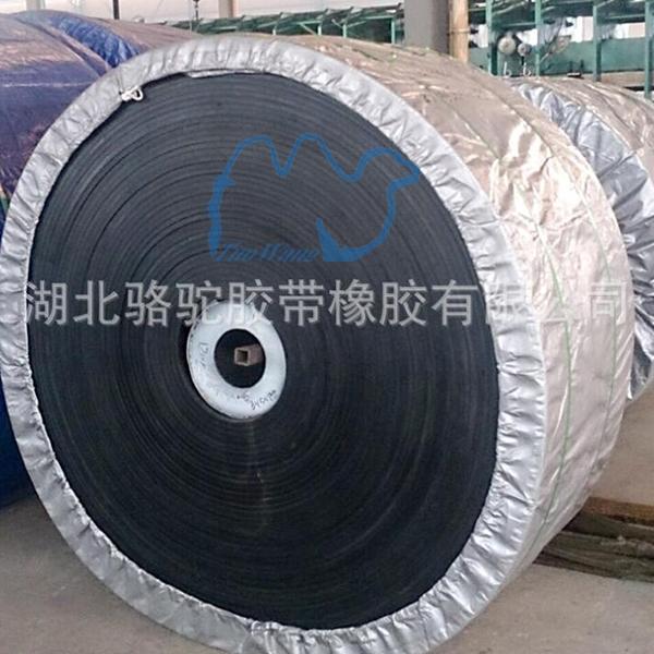 聚酯输送带|食品皮带机输送带|聚酯输送带厂家
